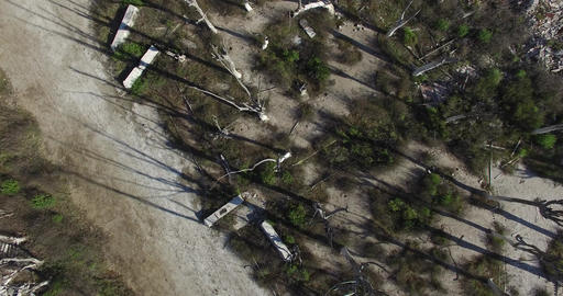 DJI Epecuen 0065 Aerial drone scene from top, over dead trees at epecuen, buenos Footage