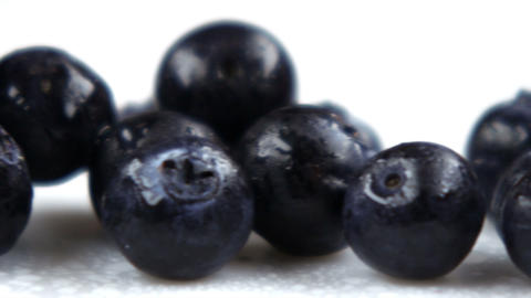 Close up slow panorama of blueberries Footage