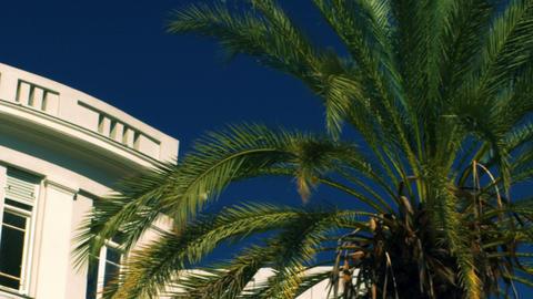 Stock Video Footage of Bialik Square buildings in Tel Aviv shot in Israel at 4k  Footage