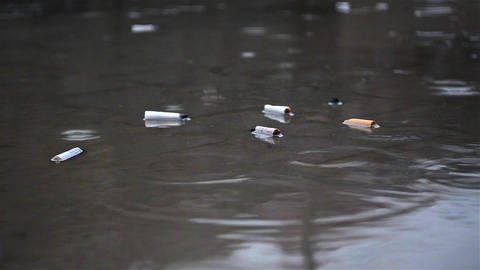 Raindrops falling in a puddle in which discarded cigarette butts more 18 Footage