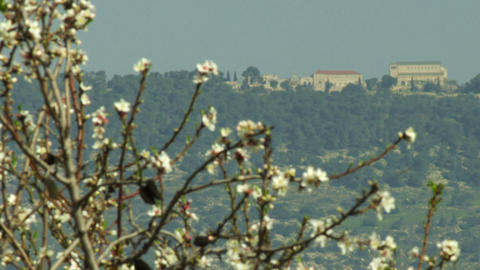 Royalty Free Stock Video Footage of Mount Tabor shot in Israel at 4k with Red Footage