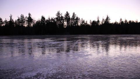 Still lake reflecting trees Footage