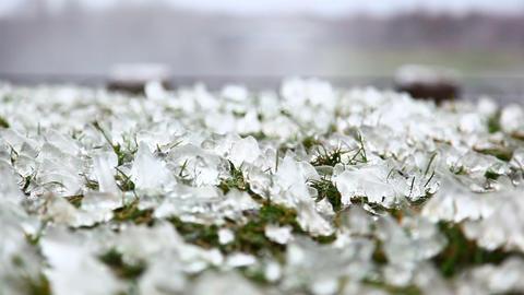 Ice-covered grass near Niagara Falls Footage