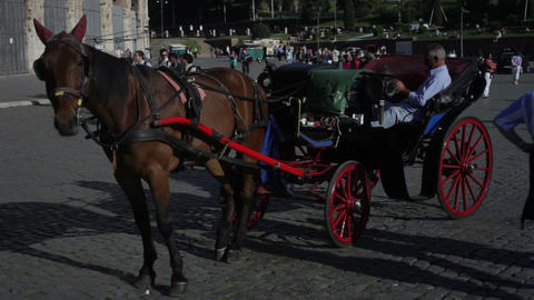 A single horse is hitched to a buggy parked in front of the Colosseum in Rome, I Footage