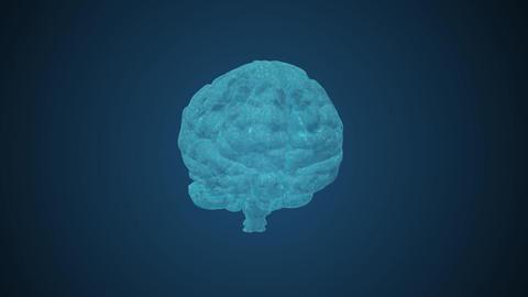 Brain Footage