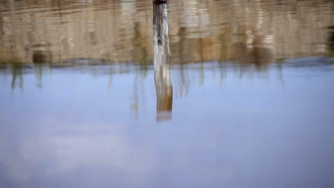 Reflection of a post in a rippling pond Footage