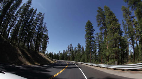 Curved highway through forest Footage