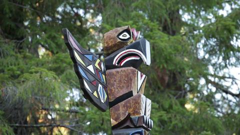 Carved Bird Totem Pole Footage