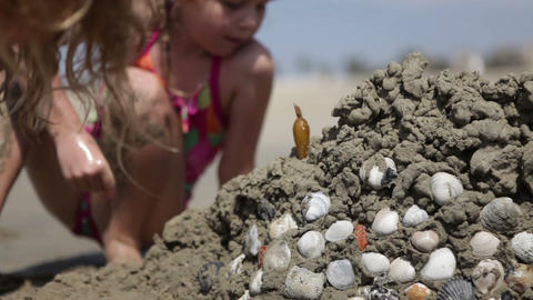 Adding Seashells to the Sand Castle Footage