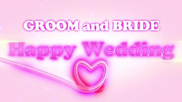 Happy Wedding(No Plugin) stock footage