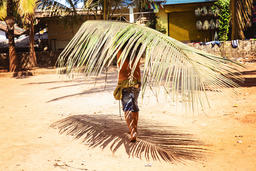 Man carrying a palm leaf Photo