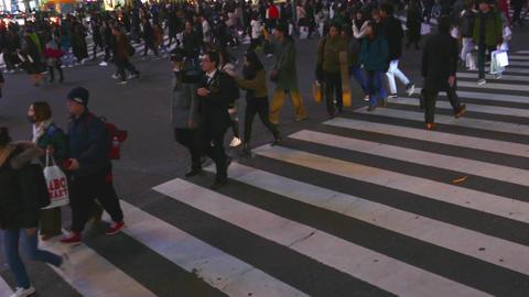 Shibuya crossing emptying Live影片
