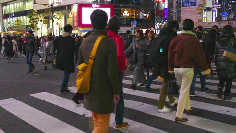 Shibuya crossing both way pan Live影片