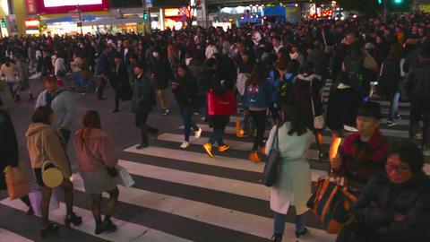 Shibuya crossing overhead Live影片
