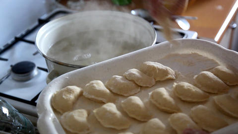 dumplings Stock Video Footage