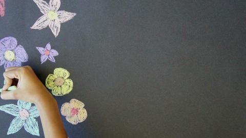 Flower Background Footage