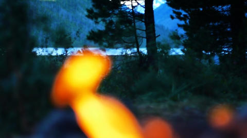Bonfire in wilderness HD LOOP Stock Video Footage