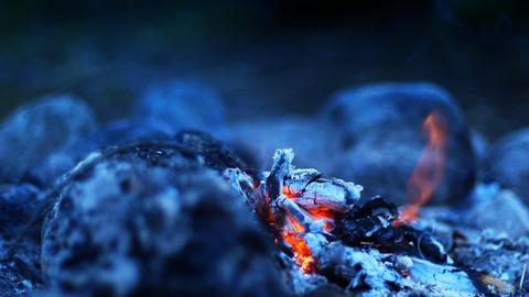 Bonfire in wilderness HD LOOP Stock Video Footage