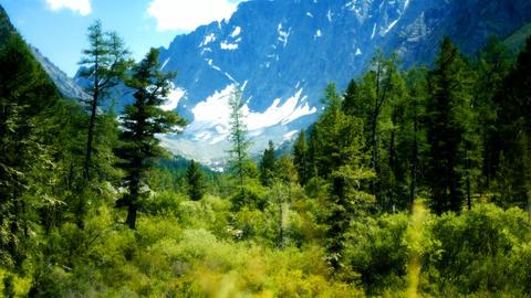 Mountain landscape HD LOOP 1 Stock Video Footage