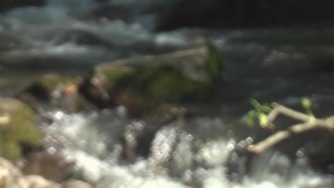 Stream Stock Video Footage