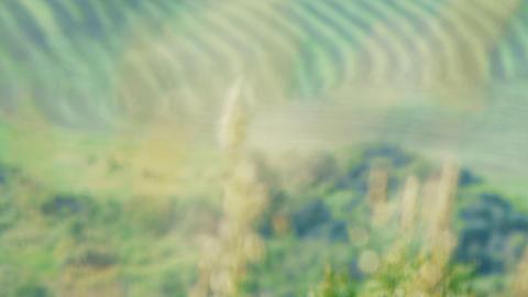 Rural 006 Stock Video Footage