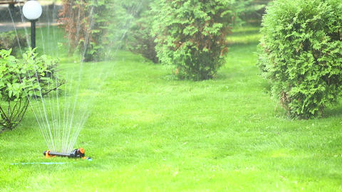 Automatic watering Stock Video Footage