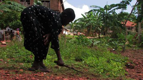 Deaf girl weeding in the garden with her machete Footage