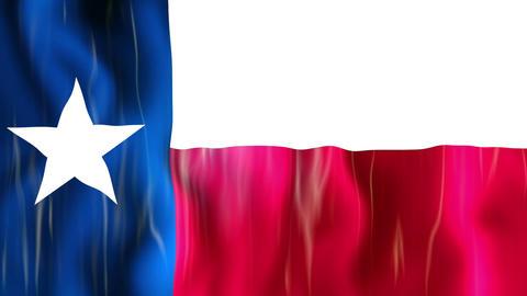 Texas State Flag Animation Animation