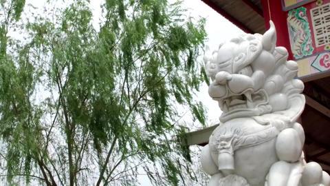 Chinese thai statue lion dragon Footage