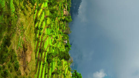Vertical shot of Time-lapse of a terraced, cultivated hillside in Nepal Footage