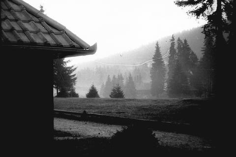 Misty morning on mountain Tara, Yugoslavia, Serbia, around 1965 Fotografía