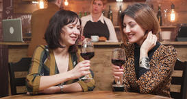 Beautiful young women celebrating their friendship with a glass of wine Live Action