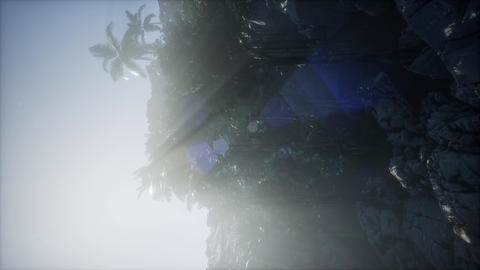 4k Mountain, field landscape with Palm trees. Jungle. Aerial view Footage