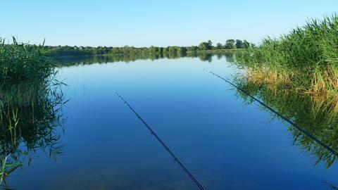 Fishing rod on river GIF