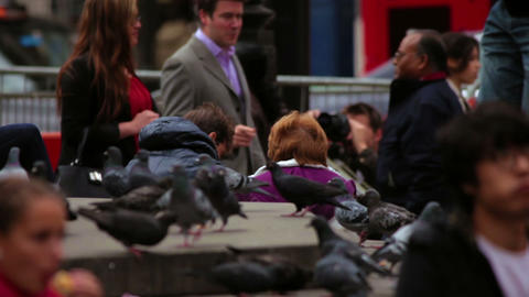 LONDON - OCTOBER 7: Unidentified people and pigeons on October 7, 2011 in London Footage
