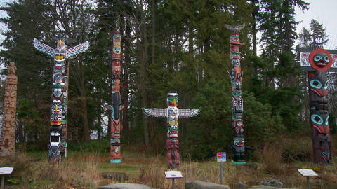 Seven First Nations totem poles in an outdoor display Footage
