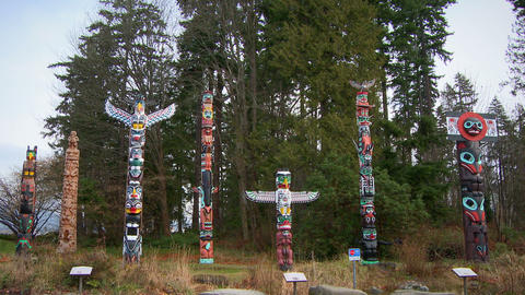 Outdoor display of seven First Nations totem poles Footage