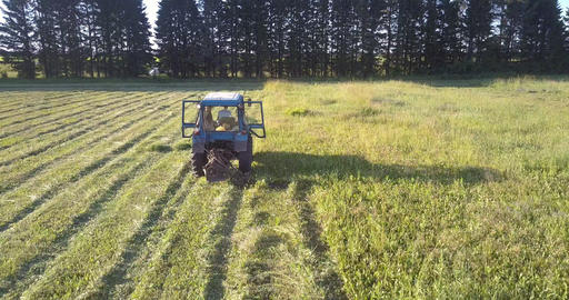 haymaker mows grass by trees shining under bright sun rays Footage