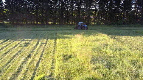 mowing-machine turns to next field furrow to cut hay grass Footage