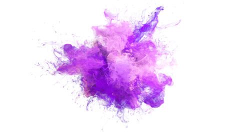 Purple Pink Color Burst - colorful smoke explosion fluid particles alpha matte Animation