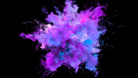 Magenta Purple Color Burst colorful smoke explosion fluid particles alpha matte Animation