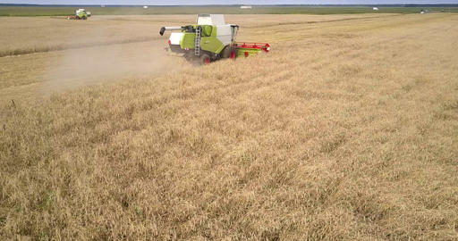 upper view harvester reel cuts wheat against landscape Footage