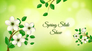 Spring Slide Show After Effects Template