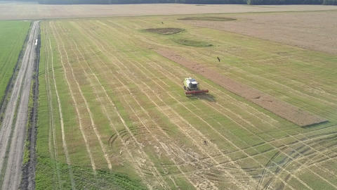upper view green and white harvester drives on green field Live Action