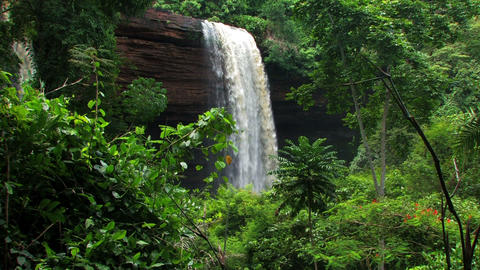 Waterfall from a cliff surrounded by greenery Footage