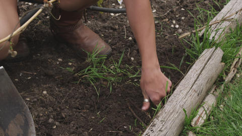 Handheld shot of a woman pulling out weeds in a garden Footage