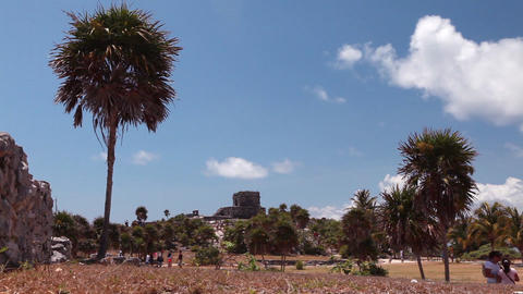 Wide, static shot of an ancient building with palm trees and people Footage