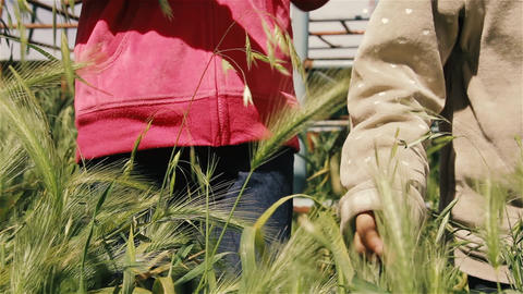 Girls Playing With Plants In The Park GIF