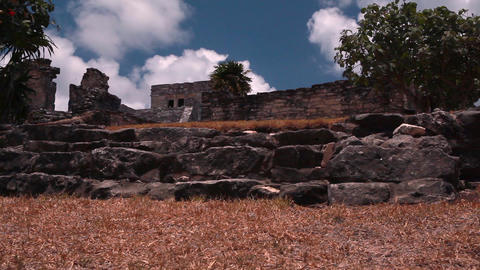 Static, medium wide shot of an ancient building in the sun with a tree next to i Footage