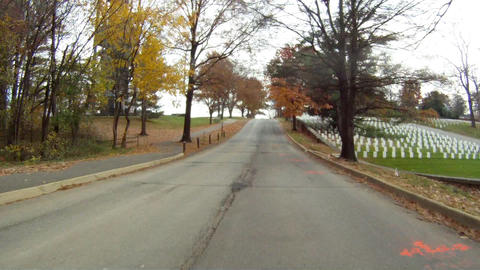 Driving down a road in Washington DC. Trees line each side of the road Footage